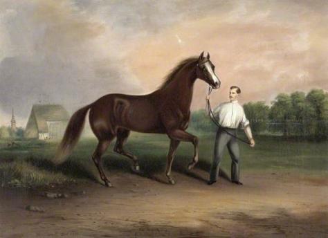 thomas kirby van zandt-caballo y cuidador