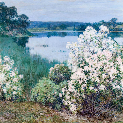 william metcalf-kalmia